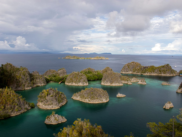 Diving in Raja Ampat